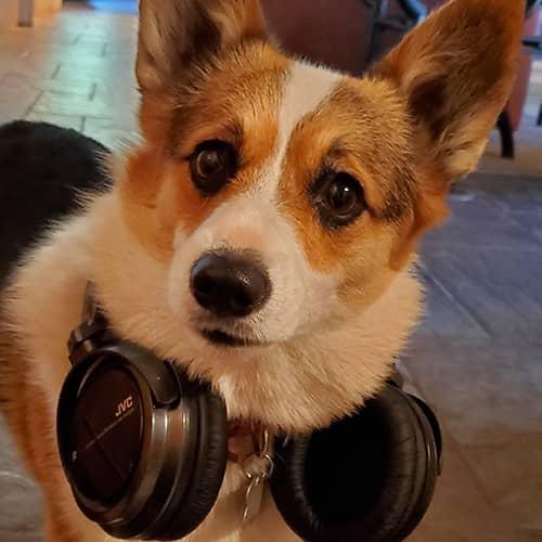 Liz in headphones